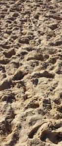 plage de sable marqué d'une multitude de pas
